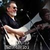 David Bromberg-2014